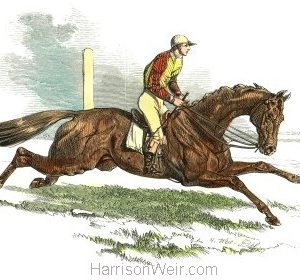 1847 Cossack - Winner of the Derby by Harrison Weir