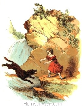 1847 Don rescues Malcom, by Harrison Weir