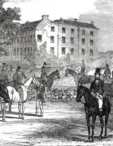 Detail: Her Majesty's Buckhounds at Salt Hill