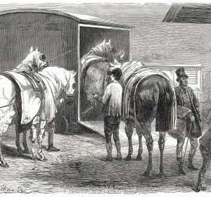1849 The Rail, The Horse-Box by Harrison Weir