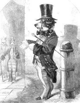1857 The Fast Dog by Harrison Weir