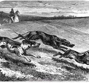 Horses and Hounds 1858