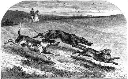 1858 Horses and Hounds by Harrison Weir