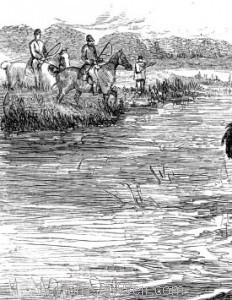 Detail: Raising his Horse's head, by Harrison Weir