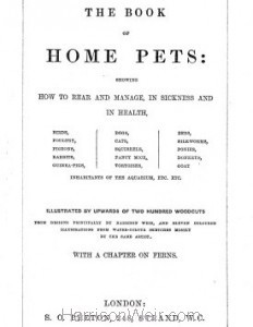 Detail: Title Page: Beetons Book of Home Pets