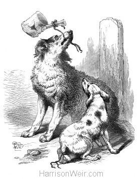 1864 A Friend in Need by Harrison Weir