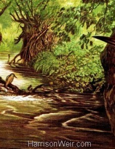 Deatil: 1864 The Kingfisher's Haunt by Harrison Weir