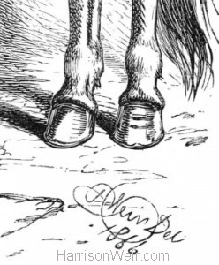 Detail: Artists Signature, Now Tom, the other foot! by Harrison Weir