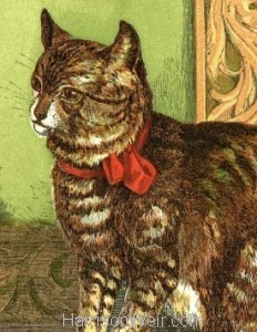 Detail: 1866 Poor Pussy by Harrison Weir