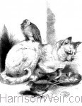 The Children's Friend 1867