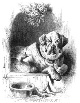 1868 The Cambrian Goose and Dog