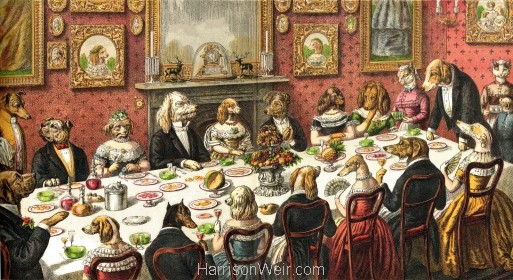 1870 The Dogs Dinner Party by Harrison Weir