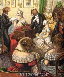 Detail: The Cats Tea Party by Harrison Weir