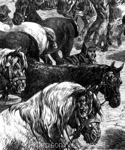 Detail: The Paris Horsemarket by Harrison Weir