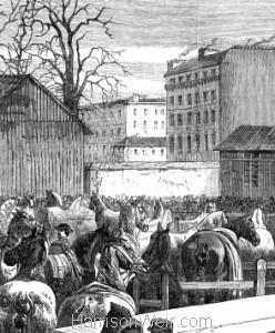 Detail: The Paris Horsemarket, by Harrison Weir