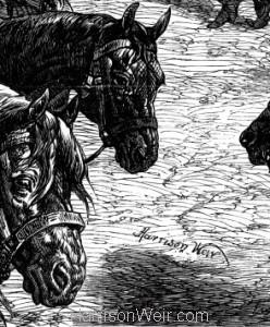 Detail: The Paris Horsemarket, signature of Harrison Weir