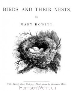 Title Page: Birds and Their Nests by Mary Howitt