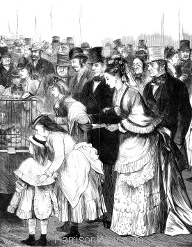 1874 The Crystal Palace Cat Show Admirers