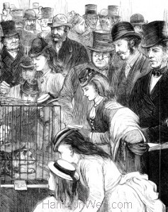 Detail: Crystal Palace Cat Show 1874