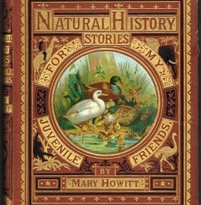 Natural History Stories for my Juvenile Friends