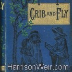 Crib and Fly