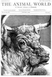 Full Page The Animal World Jan 1, 1876 by Harrison Weir