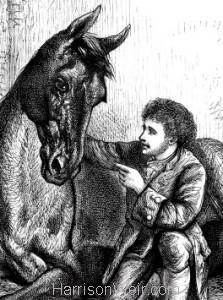1876 The Irish Horse Tamer by Harrison Weir