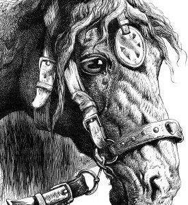 Horse Print Portrait Format