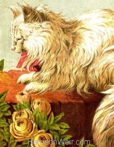 Detail: 1877 The Persian Cat by Harrison Weir