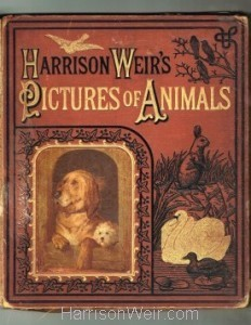 Book Cover: Harrison Weir's Pictures of Animals : The Religious Tract Society
