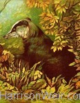 Wildlife Print Portrait Format