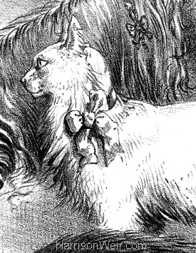 Detail: Crystal Palace Cat and Pet Dog Show