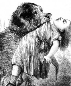 Detail: A Brave Dog by Harrison Weir