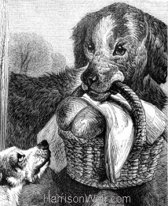 Detail: A Dog's Pity by Harrison Weir