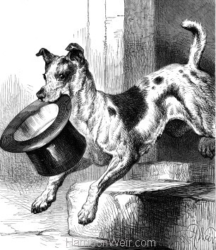 1878 A Four-Footed Thief by Harrison Weir