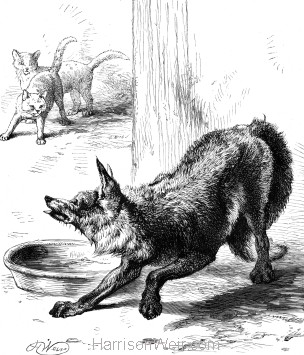 1878 A Knowing Fox, by Harrison Weir