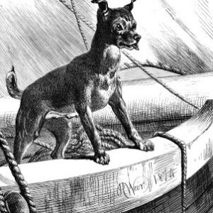 1874 A Sea-Faring Dog by Harrison Weir