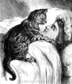 1878 A Wonderful Cat by Harrison Weir