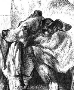 1878 An Intelligent Dog by Harrison Weir