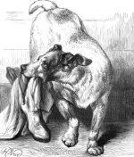 1878 An Intelligent Dog by Harrison Weir