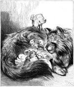 1871 Angora Tom nursing chickens, by Harrison Weir
