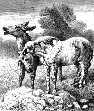 1878 - Animal Affection, by Harrison Weir