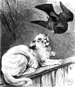 1878 Blackbird and Cat, by Harrison Weir