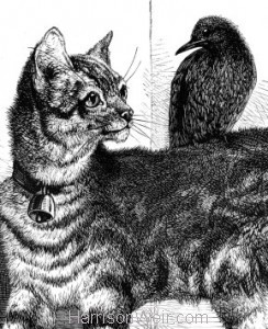 Detail: Cat and Starling, by Harrison Weir
