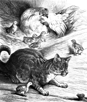 1878 Cat minding Chickens, by Harrison Weir