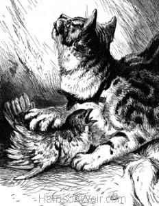Detail: Grimalkin, by Harrison Weir