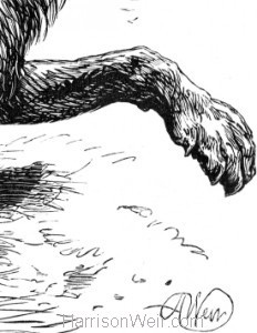 Detail: Hyena frightened by a Trumpeter