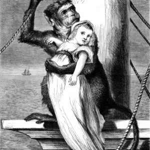 1878 Monkey and Child by Harrison Weir