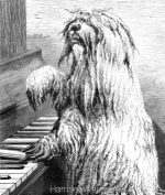 1878 Quiz at the Piano, by Harrison Weir