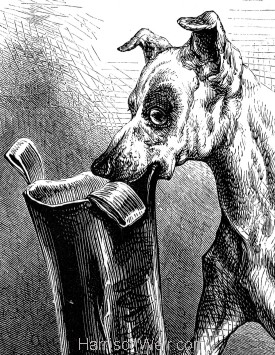 Detail: Snob, saving his Master. by Harrison Weir